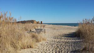 MV-Beach